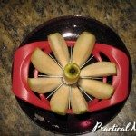 Product Review: Apple Slicer