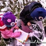 Winter Activity: Snowflake / Snow Crystal Observation