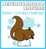 Winter Learning Challenge