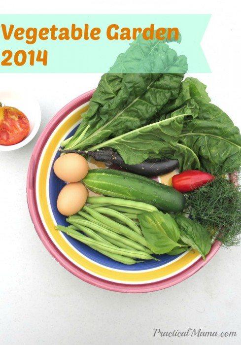 VegetableGarden2014