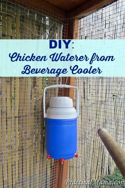 DIY: Chicken Waterer from Beverage Cooler
