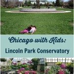 Chicago with kids: Lincoln Park Conservatory