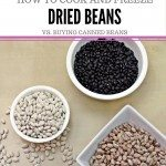 How to cook and freeze dried beans in bulk