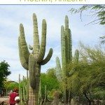 Family Travel: Things to do in Phoenix, AZ with children