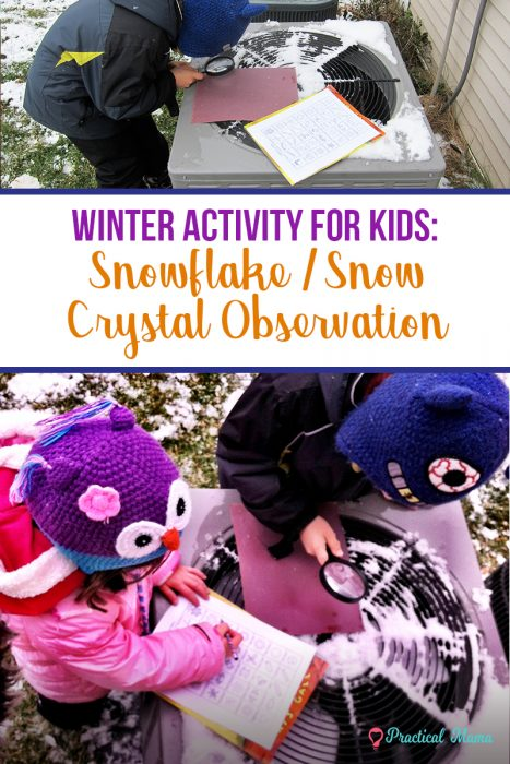 Winter activity snowflake observation